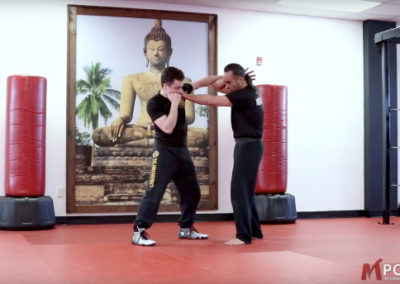Maphilindo Silat: Counter Off Of A Jab-Sequence 2